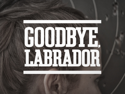 goodbye, labrador